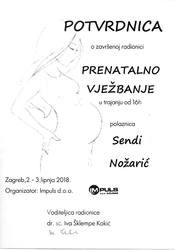 Fizio GP - Sendi Nožarić