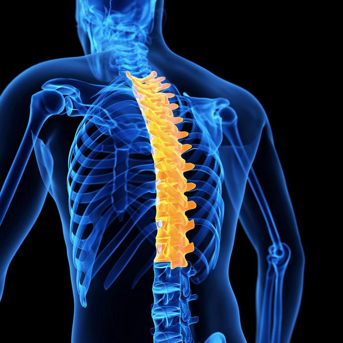 Fizio GP - blog - mobilnost prsne kralježnice